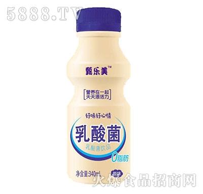甄乐美乳酸菌风味饮品340ml