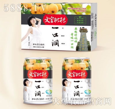 文宫枇杷枇杷果汁饮料310mlX24
