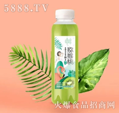 文宫猕猴桃果汁