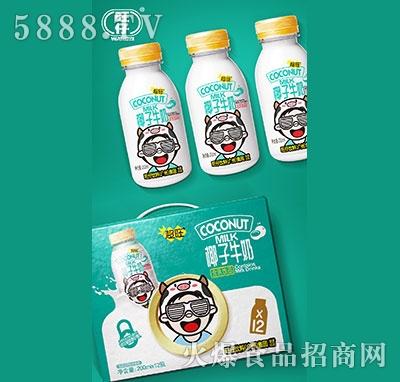 超旺椰子牛奶含乳饮品200ml×12瓶