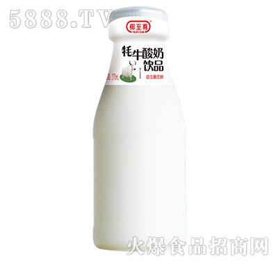 椰至尊牦牛酸奶饮品270ml