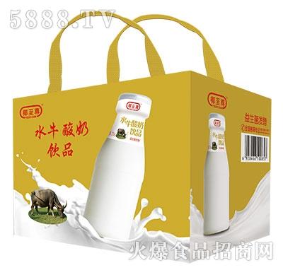 椰至尊水牛酸奶饮品产品图