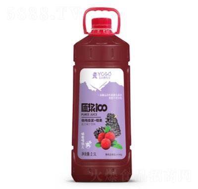 玉川果先生杨梅桑葚+椰果复合芒果汁饮料2.5L