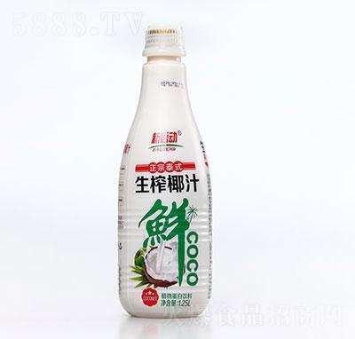 新启动生榨椰子汁植物蛋白饮料1.25L