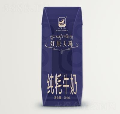 红原天珠纯牦牛奶