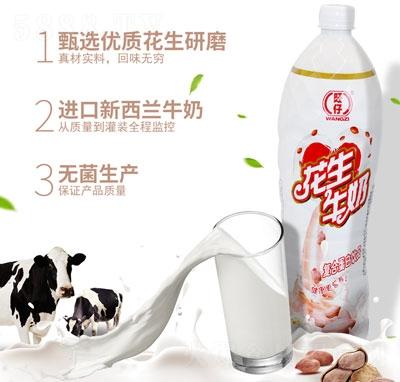旺仔花生牛奶复合蛋白饮品