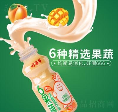 叮当牛6果蔬乳酸菌饮品(瓶装)