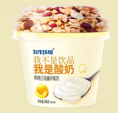 牧牛庄园黄桃谷物嚼拌酸奶145ml