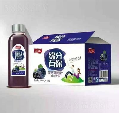 宋乐蓝莓葡萄汁果汁饮料350mlX15瓶