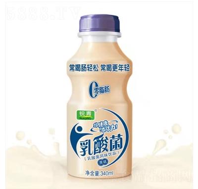 锐青乳酸菌风味饮料原味340毫升