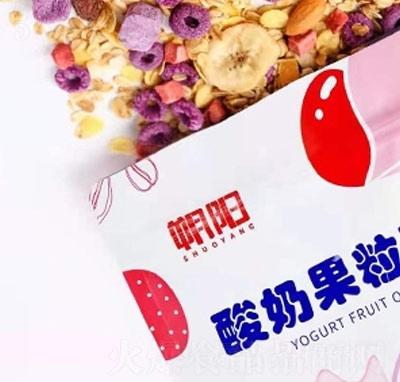 朔阳酸奶果粒燕麦片产品图