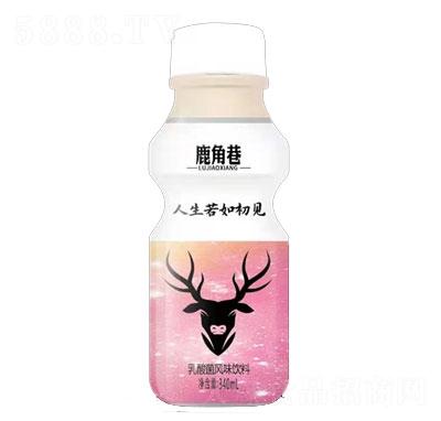 乳酸菌风味饮料