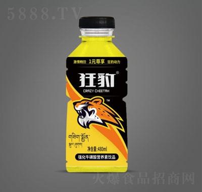 狂豹强化牛磺酸营养素饮品480ml(瓶装)