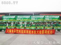 绿色风衣队——风范
