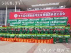 火爆独特的宣传队伍亮相第七届水平博览会