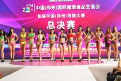 """合心、合契、合力""""第十九届郑州国际糖酒会新闻发布会召开"""