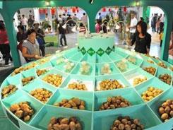 北京火锅食材展有那些展品