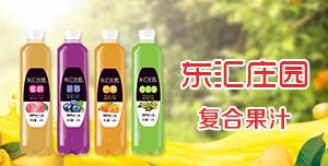 河南东汇饮品有限公司