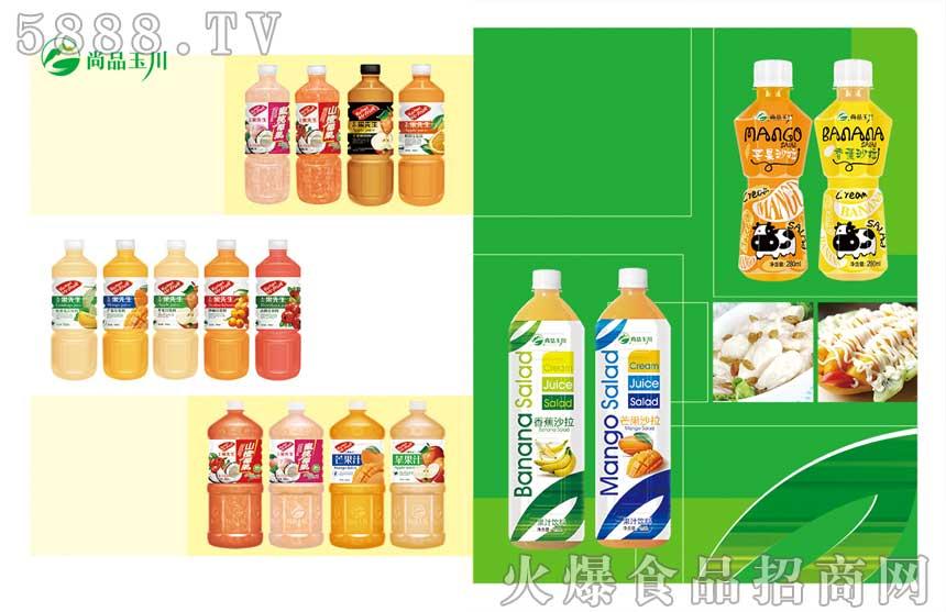 尚品玉川果汁饮料