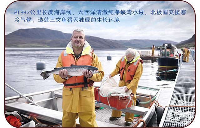 深海渔家礼盒装_12