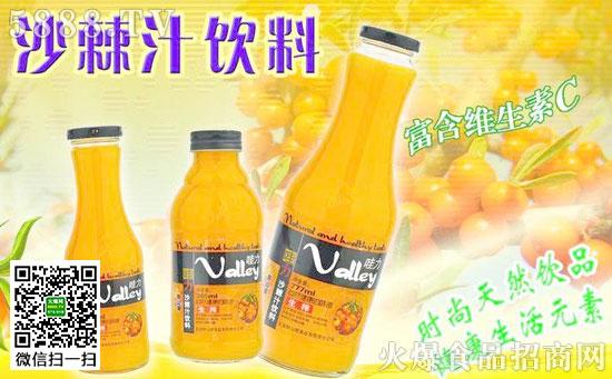 沙棘汁有什么功效_红枣胶原肽沙棘汁红枣胶原肽沙棘汁的功效胜
