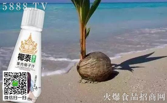 椰子树的根部不断从土壤中吸取水分 与钾、钠、钙、镁等丰富的矿物质 水分、营养沿着树干向上运输 又通过椰子外中内三层种皮层层过滤 正是经过如此复杂、日积月累的过程 最终椰子水作为椰树的精华 全部被存储在青椰子里