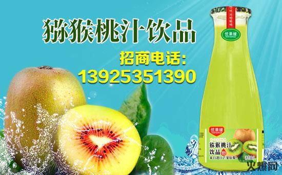 猕猴桃汁海报