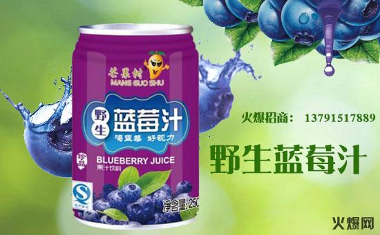 芒果树野生蓝莓汁