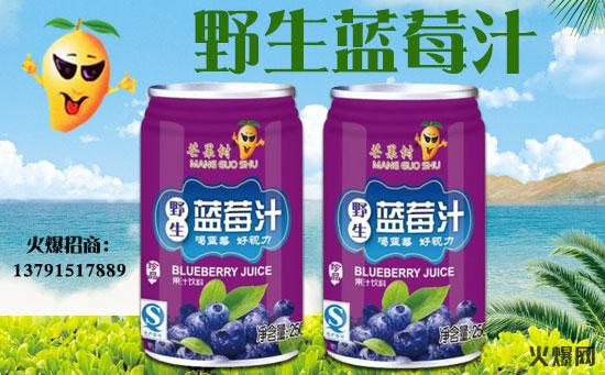 芒果树野生蓝莓汁饮料