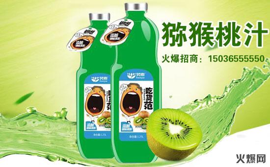 猕猴桃汁饮料