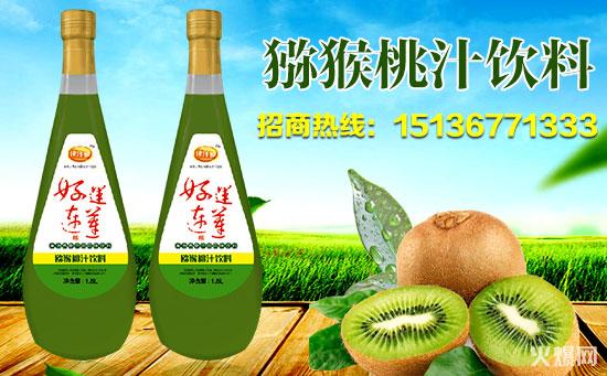 猕猴桃汁饮料图