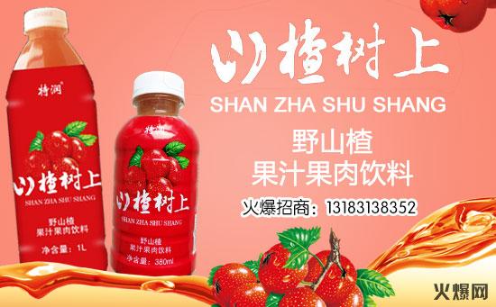 特润山楂汁