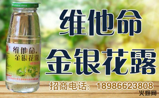 楚神维他命金银花露纯植物绿色饮品,美味更健康!