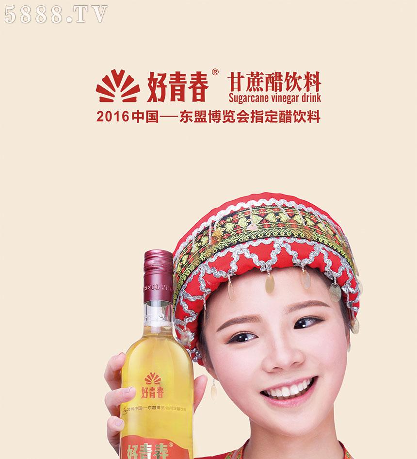 广西好青春醋业有限公司