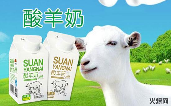 秦岭羊酸羊奶