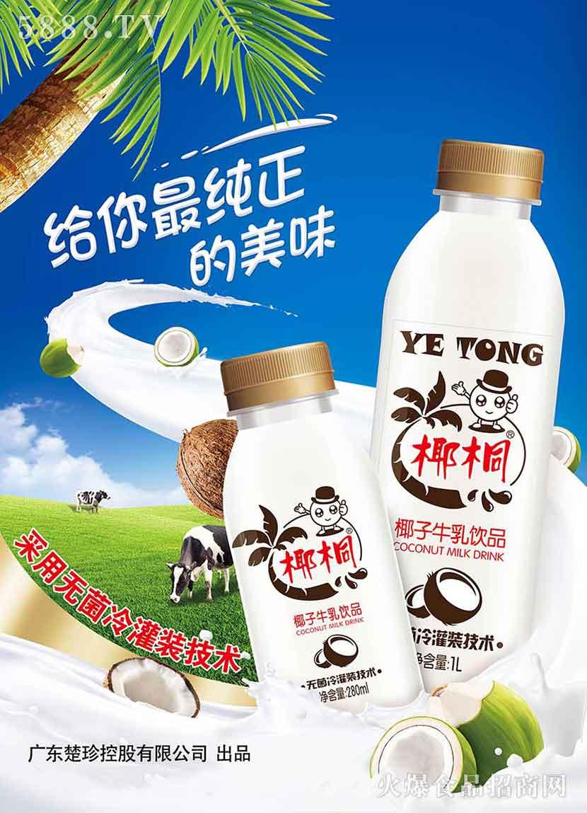 椰桐椰子牛乳海报