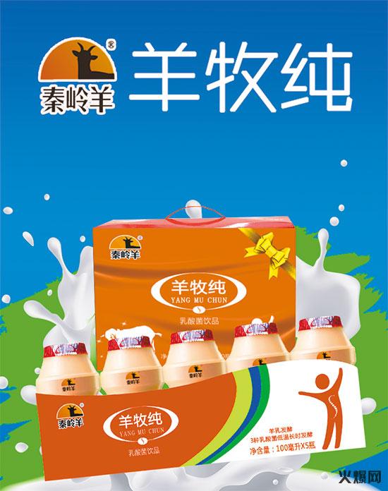 秦岭羊羊牧纯乳酸菌