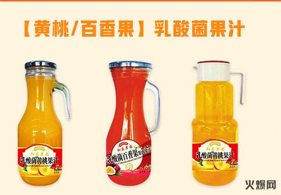 知乐果园乳酸菌果汁