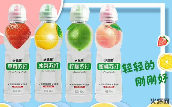 河北百事康饮料有限公司