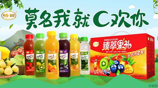 果汁市场潜力巨大,必将迎来新的销售高潮!