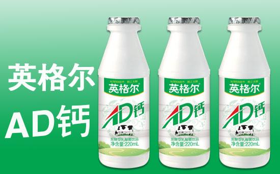 英格尔AD钙发酵型乳酸菌