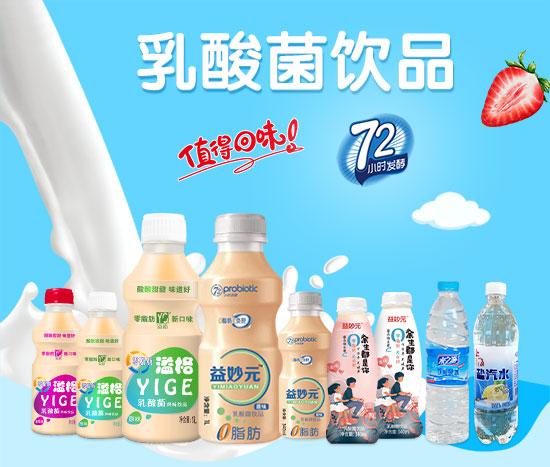 乳酸菌饮品
