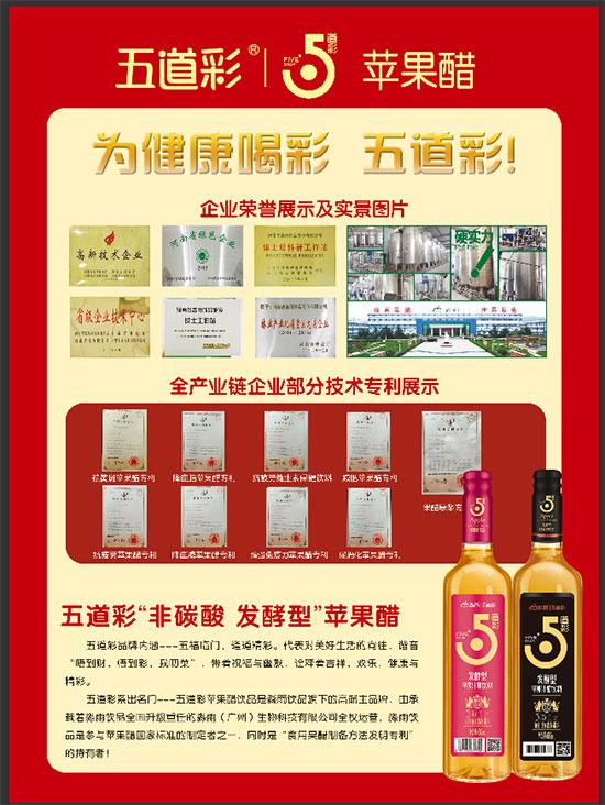 淼雨——努力打造中国果醋第一品牌