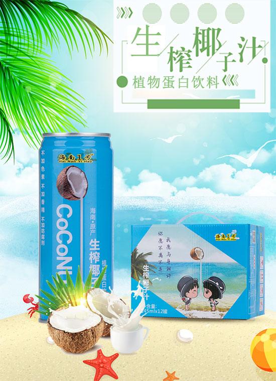 海南省椰之源食品有限公司