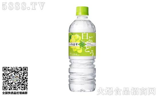 可口可乐白葡萄果味水价格