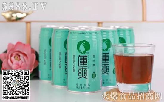 莲爽荷叶茶植物饮料价格