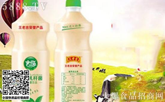 王老吉吉悠植物乳杆菌乳酸菌价格