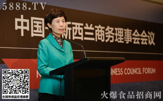 中国贸促会、中国国际商会会长高燕在中新商务理事会会议发表致辞