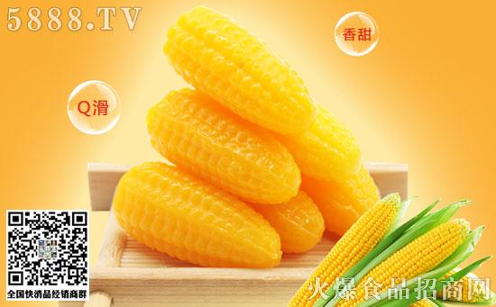 锦大玉米糖价格