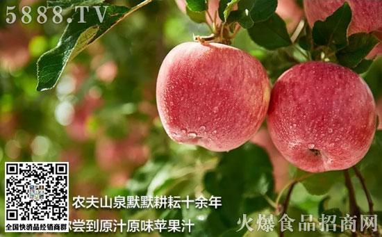 农夫山泉常温NFC新疆苹果汁
